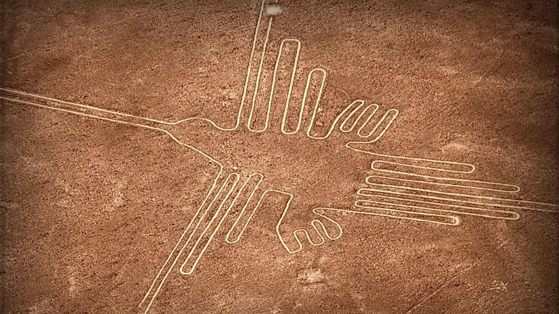 colibri-nazca