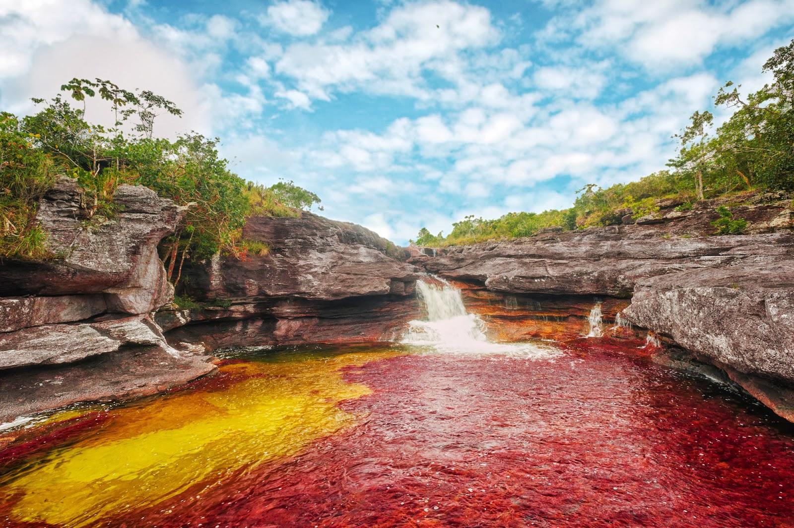 El Río Caño Cristales