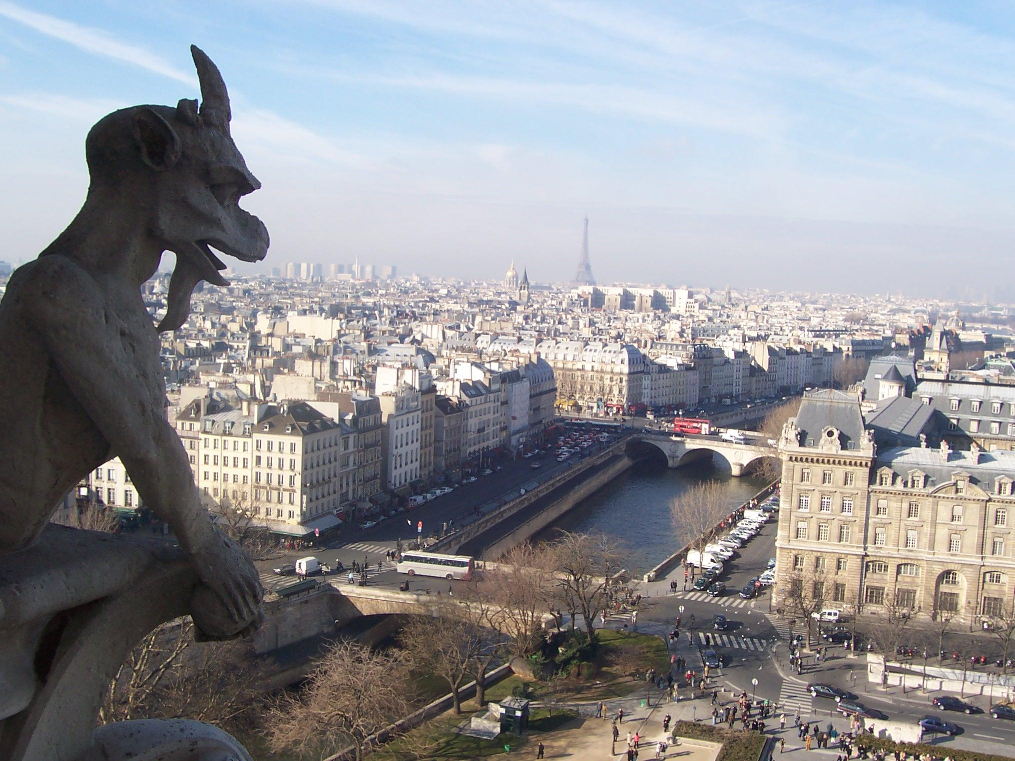 Vista_desde_Notre_Dame