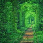 Tunnel of Love, in Ukraine